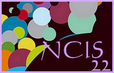N.C.I.S. : Enquêtes spéciales