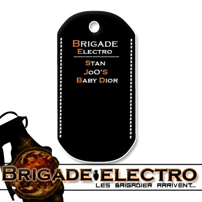 "Blog officiel du crew ""Brigade-electro"""
