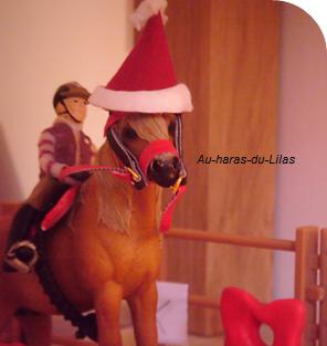 Fête de Noël ❆