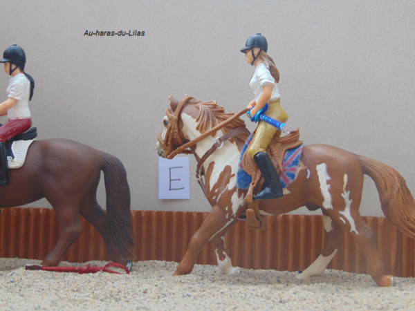 Stage galop 1 - Mercredi -