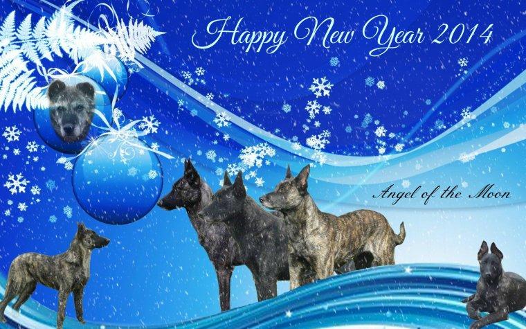 tous nos voeux de bonheur pour cette nouvelle année