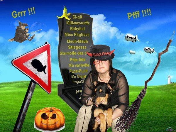 (_.•*`¯`*•.->  Halloween 2011 <-.•*`¯`*•._)