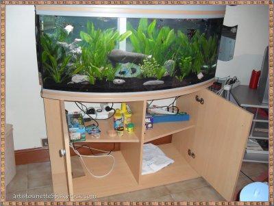 Meuble aquarium ouvert blog de artistounette56 for Aquarium ouvert