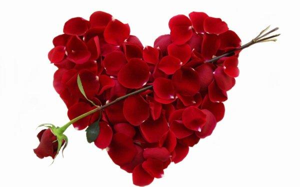 Joyeuse st valentin <3