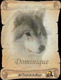 Photo de domino956