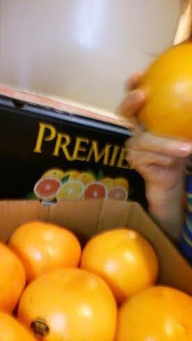 グレープフルーツ30日間食べ続けてみます!減量なるかな?