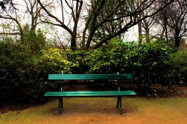 La solitude est un jardin où l'âme se dessèche, les fleurs qui y poussent n'ont pas de parfum.