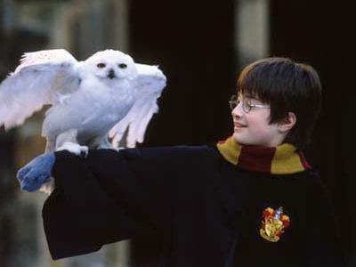 Harry / à l'école des sorciers