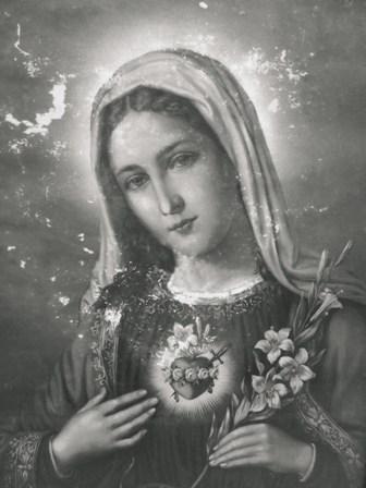 Mois d'août! Le mois consacré au Coeur Immaculé de Marie.