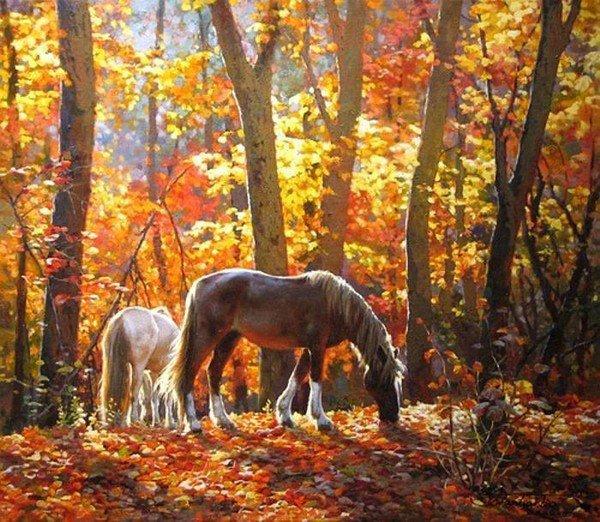 Toute la merveilleuse nature que nous offre notre terre.