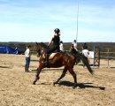 Photo de troc-vente-equitation