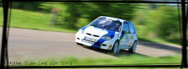 Rallye Dijon-Côte d'Or 2012