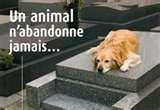 un animal n abandonne jamais