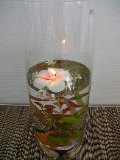 Plante aquatique dans un vase blog de eglantinefleurs - Bougies flottantes ikea ...