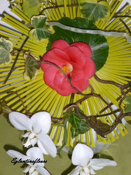 Rosace fleurie...