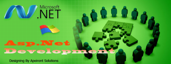 Asp. Net Development - An Astute Web Development Service