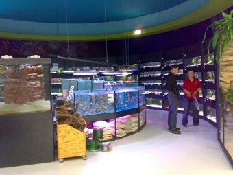 Vendeur en animalerie blog de animauxpluskunepassion for Vendeur aquarium