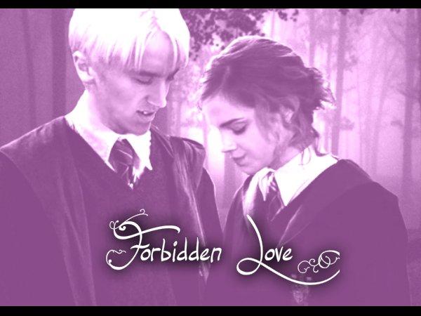 Forbidden Love Chapitre 1