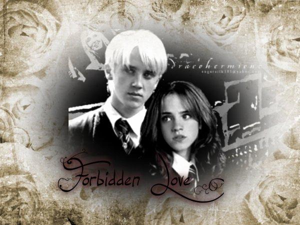Forbidden Love Chapitre 2