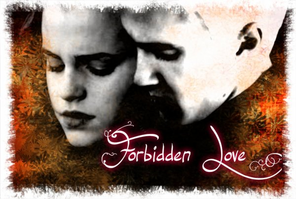 Forbidden Love Chapitre 4
