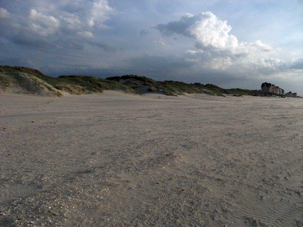 De la Panne à Bray Dune