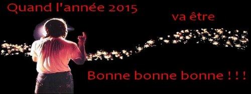 Je vous souhaite une très BONNE ANNEE !!!! :D