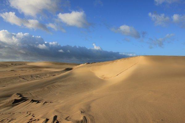 Sur la Dune du Pilat