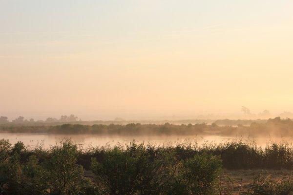 Domaine du Fleury dans la brume
