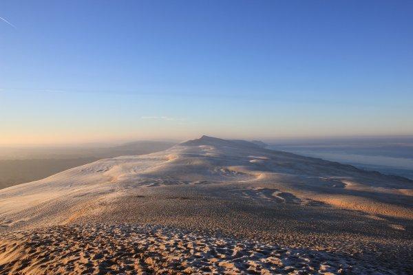 La Dune piétinée
