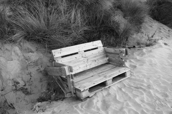 Découverte inattendue au pied de la Dune