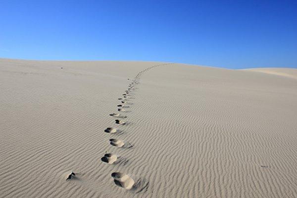 On a marché sur la Dune