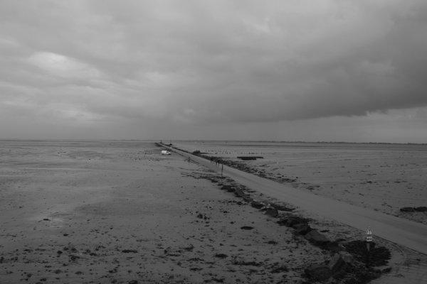 Noirmoutier : le Guois