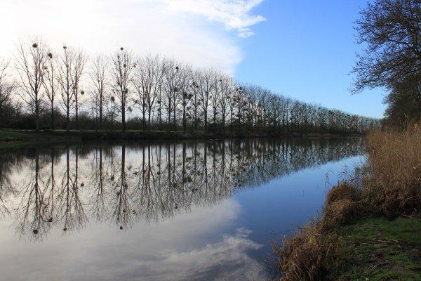 Le canal de la Martinière