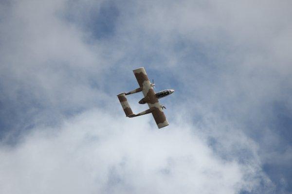 Flying spirit - Bronco