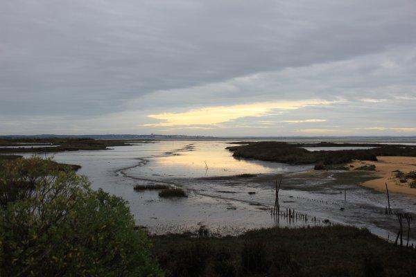Marée basse en fin de journée
