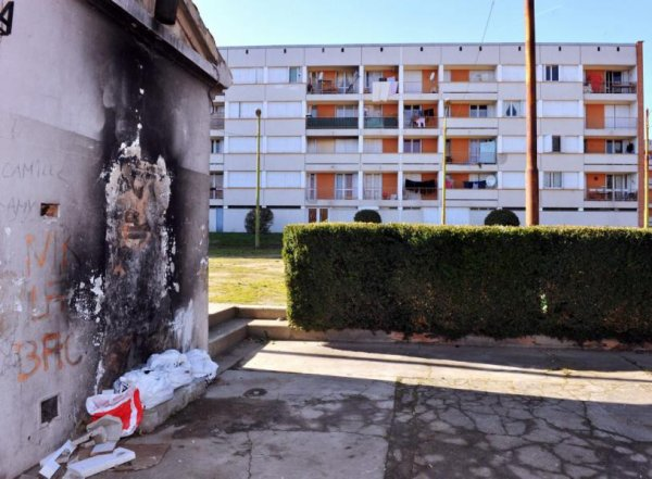 Albi. Deux jeunes incendiaires arrêtés