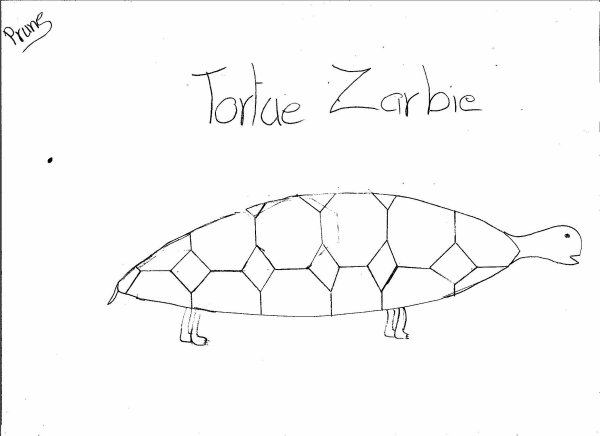 la tortue zarbie / Turtle zarbie