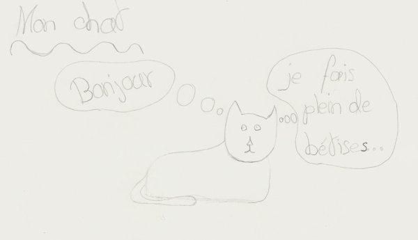 mon chat / my cat