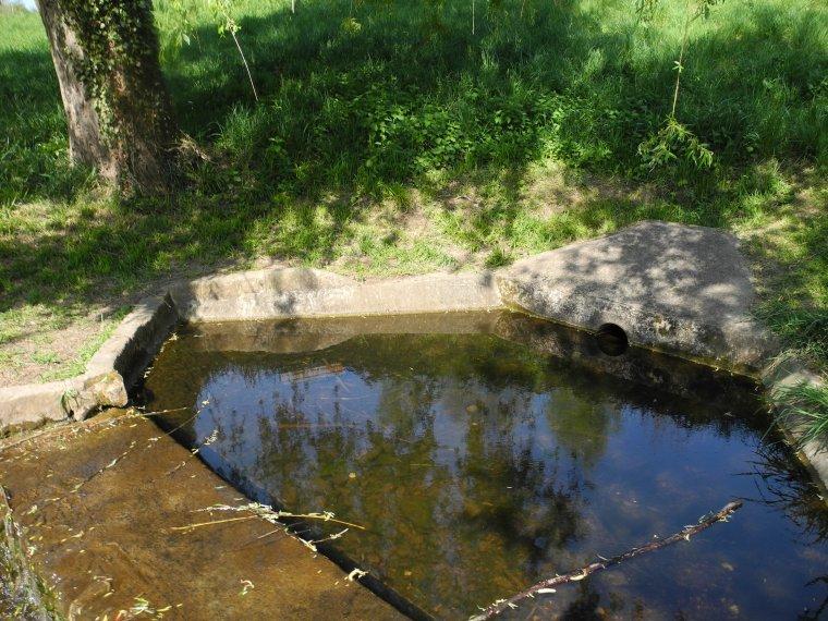 les petits cours d'eau