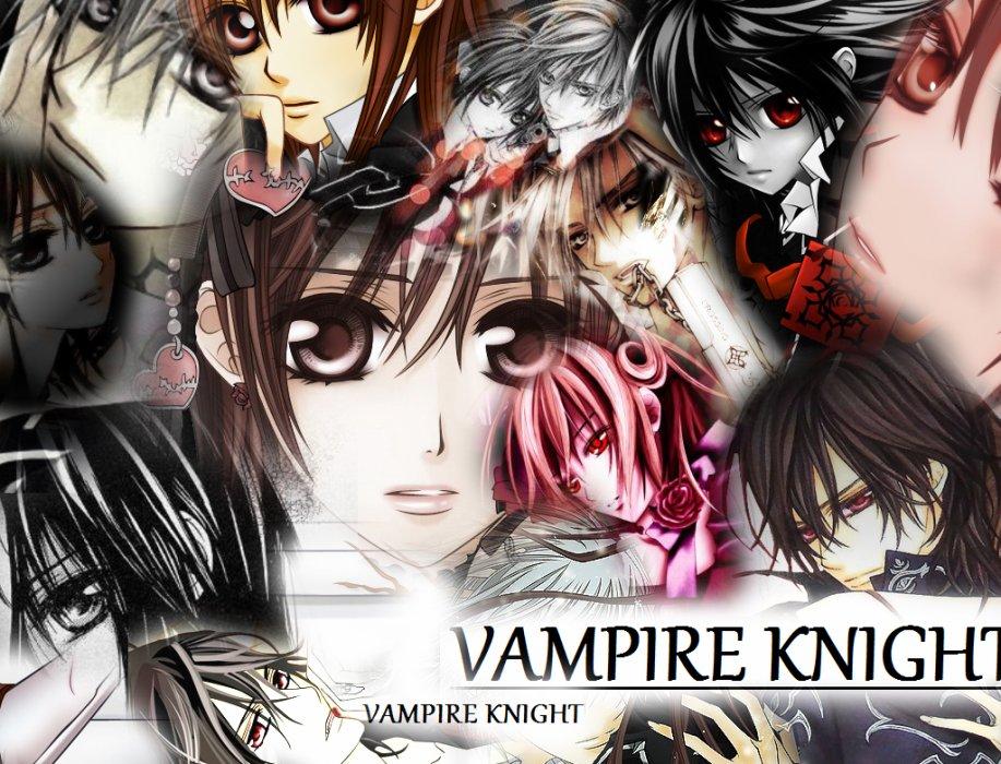 Blogue de vampire-knight-700