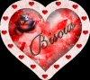 joyeux st valentin 2014 a tous je vous souhaite une vie remplie d'amour!