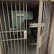 » C'est fou comme la prison ma permit de réfléchir . (2010)