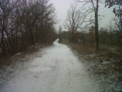 Snowing road