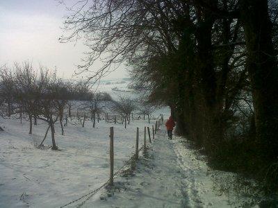 Le Gers dans la neige à -10 Zont pas vu ça depuis 1956!