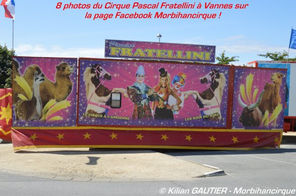 CIRQUE PASCAL FRATELLINI Vannes 2015