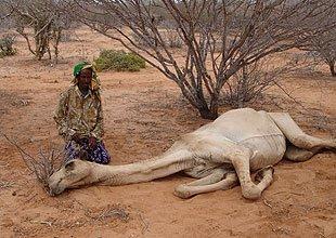 اغيثوا اهلنا فى صومال