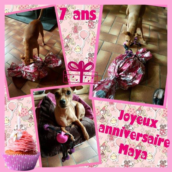 Joyeux anniversaire Maya ! Déjà 7ans...
