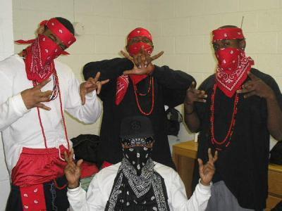 Bloods Gang