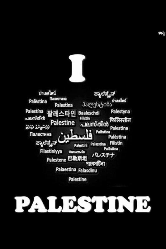 Article rien à voir: Palestine