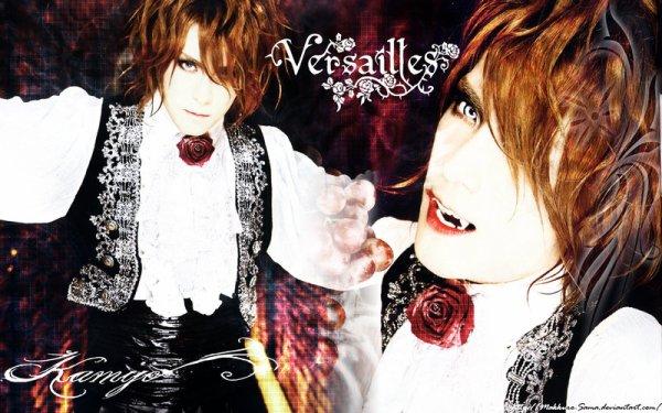 Le Prince de Versailles
